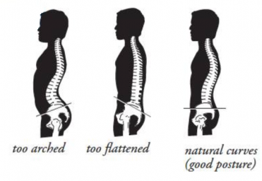 Neutral-spine